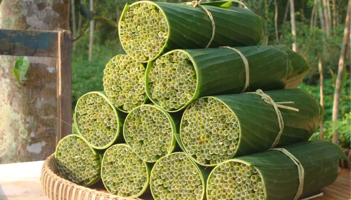 cannucce-biodegradabili-vietnam
