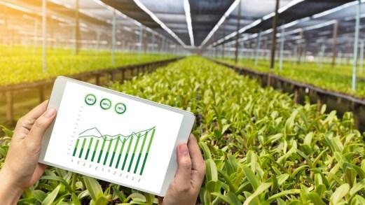 Dl Rilancio, tutte le misure per le aziende agricole